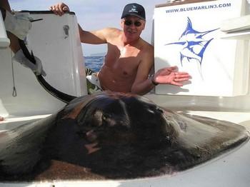20/01 common stingray Cavalier & Blue Marlin Sport Fishing Gran Canaria