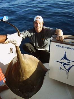 10/04 common stingray Cavalier & Blue Marlin Sport Fishing Gran Canaria