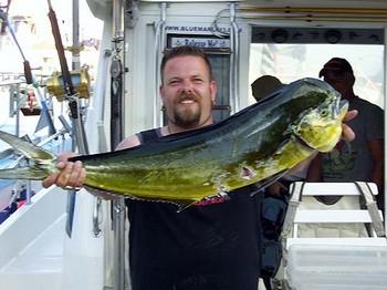 14/06 dorado Cavalier & Blue Marlin Sport Fishing Gran Canaria