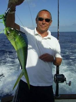 17/09 dorado Pesca Deportiva Cavalier & Blue Marlin Gran Canaria