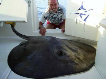 04/10 round stingray Cavalier & Blue Marlin Sport Fishing Gran Canaria