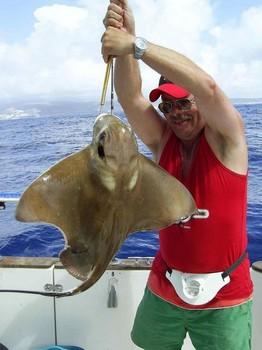 09/10 cownose ray Cavalier & Blue Marlin Sport Fishing Gran Canaria