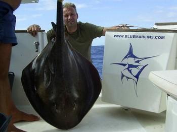 01/11 roughtail stingray Cavalier & Blue Marlin Sport Fishing Gran Canaria