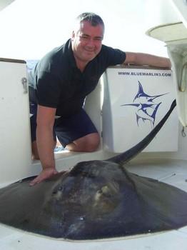 28/01 common stingray Cavalier & Blue Marlin Sport Fishing Gran Canaria