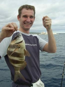 24/02 zebra seabream Cavalier & Blue Marlin Sport Fishing Gran Canaria