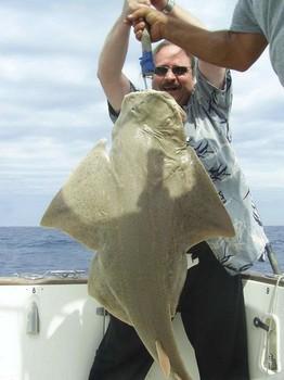 13/04 angel shark Cavalier & Blue Marlin Sport Fishing Gran Canaria