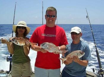 06/06 redbanded seabreams Cavalier & Blue Marlin Sport Fishing Gran Canaria