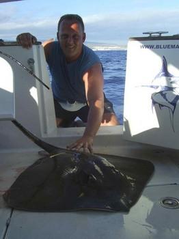 27/06 common stingray Cavalier & Blue Marlin Sport Fishing Gran Canaria