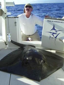 30/07 common stingray Cavalier & Blue Marlin Sport Fishing Gran Canaria