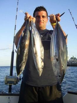 19/08 skipjack tuna Cavalier & Blue Marlin Sport Fishing Gran Canaria