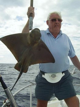 20/09 eagle ray Cavalier & Blue Marlin Sport Fishing Gran Canaria