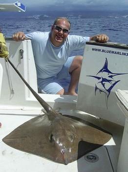 22/09 common stingray Cavalier & Blue Marlin Sport Fishing Gran Canaria