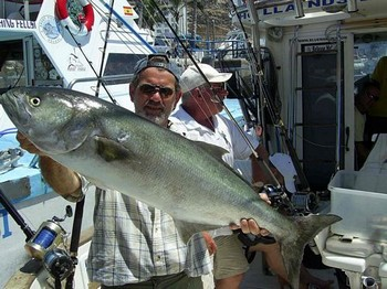 Blue fish - Yellowtail Cavalier & Blue Marlin Sport Fishing Gran Canaria