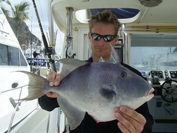 02/04 triggerfish Cavalier & Blue Marlin Sport Fishing Gran Canaria
