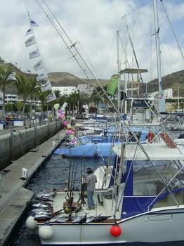 grande fiësta Cavalier & Blue Marlin Sport Fishing Gran Canaria