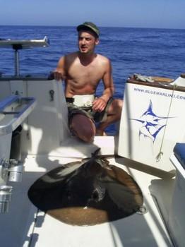 24/04 mantarraya redonda Pesca Deportiva Cavalier & Blue Marlin Gran Canaria