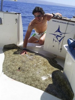 07/05 butterfly ray Cavalier & Blue Marlin Sport Fishing Gran Canaria