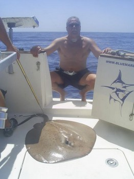 roughtail stingray Cavalier & Blue Marlin Sport Fishing Gran Canaria