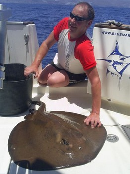 04/06 round stingray Cavalier & Blue Marlin Sport Fishing Gran Canaria