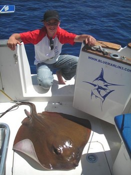 09/06 common stingray Cavalier & Blue Marlin Sport Fishing Gran Canaria