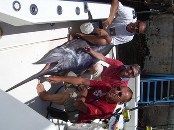 22/06 blue marlin Cavalier & Blue Marlin Sport Fishing Gran Canaria