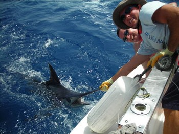09/07 blue marlin Cavalier & Blue Marlin Sport Fishing Gran Canaria