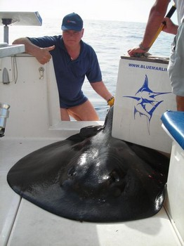 31/07 roughtail stingray Cavalier & Blue Marlin Sport Fishing Gran Canaria
