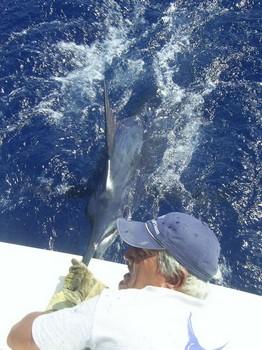 05/09 blue marlin Cavalier & Blue Marlin Sport Fishing Gran Canaria