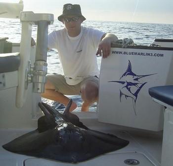 17/09 common stingray Cavalier & Blue Marlin Sport Fishing Gran Canaria