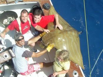 29/09 duckbillray Cavalier & Blue Marlin Sport Fishing Gran Canaria