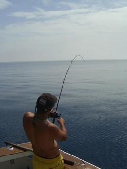 light tackle Cavalier & Blue Marlin Sport Fishing Gran Canaria