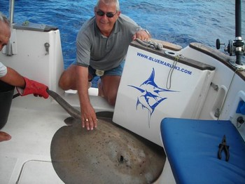 mantarraya redonda Pesca Deportiva Cavalier & Blue Marlin Gran Canaria