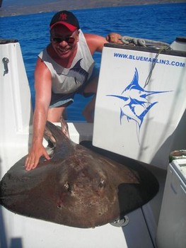20/10 roughtail stingray Cavalier & Blue Marlin Sport Fishing Gran Canaria