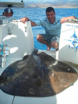 26/11 roughtail stingray Cavalier & Blue Marlin Sport Fishing Gran Canaria