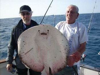 08/12 roughtail stingray Cavalier & Blue Marlin Sport Fishing Gran Canaria