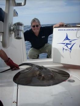 09/12 round stingray Cavalier & Blue Marlin Sport Fishing Gran Canaria