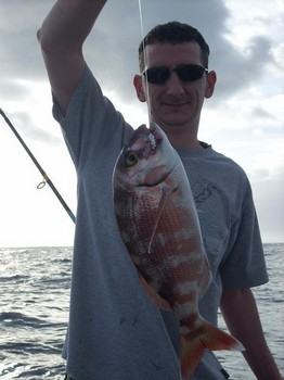 red banded seabream Cavalier & Blue Marlin Sport Fishing Gran Canaria