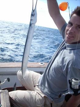 gar fish Cavalier & Blue Marlin Sport Fishing Gran Canaria