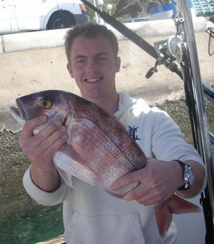 15/02 red banded seabream Cavalier & Blue Marlin Sport Fishing Gran Canaria