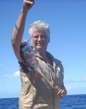 10/03 red banded seabream Cavalier & Blue Marlin Sport Fishing Gran Canaria