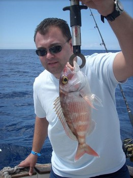 red banded seabream Cavalier & Blue Marlin Sport Fishing Gran Canaria