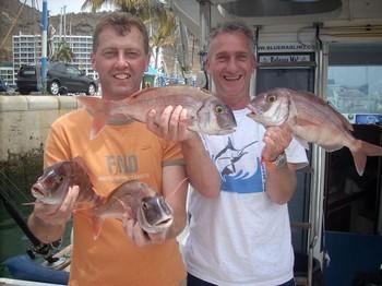 dos amigos Cavalier & Blue Marlin Sport Fishing Gran Canaria