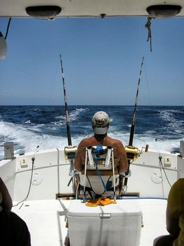 the fighting chair Cavalier & Blue Marlin Sport Fishing Gran Canaria