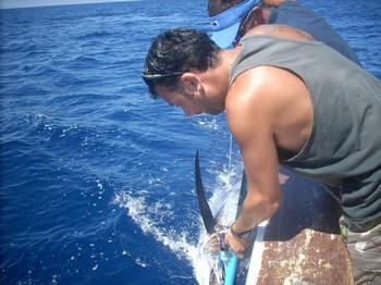 Liberame Pesca Deportiva Cavalier & Blue Marlin Gran Canaria