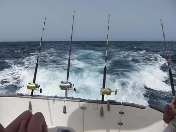 Blue marlin? Cavalier & Blue Marlin Sport Fishing Gran Canaria