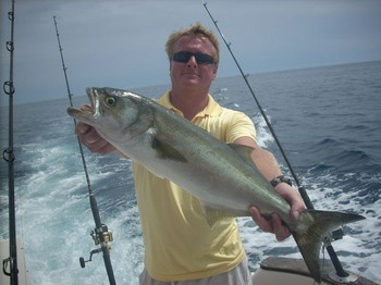 07/09 kingfish Cavalier & Blue Marlin Sport Fishing Gran Canaria