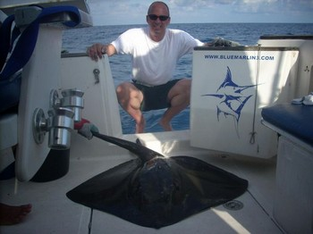 22/09 common stingray Cavalier & Blue Marlin Sport Fishing Gran Canaria