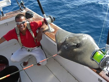 01/10 common stingray Cavalier & Blue Marlin Sport Fishing Gran Canaria
