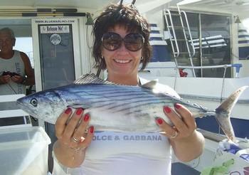 12/11 atlantic bonito Cavalier & Blue Marlin Sport Fishing Gran Canaria