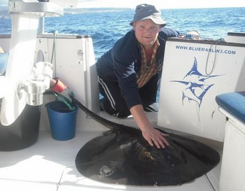 20/01 roughtail stingray Cavalier & Blue Marlin Sport Fishing Gran Canaria